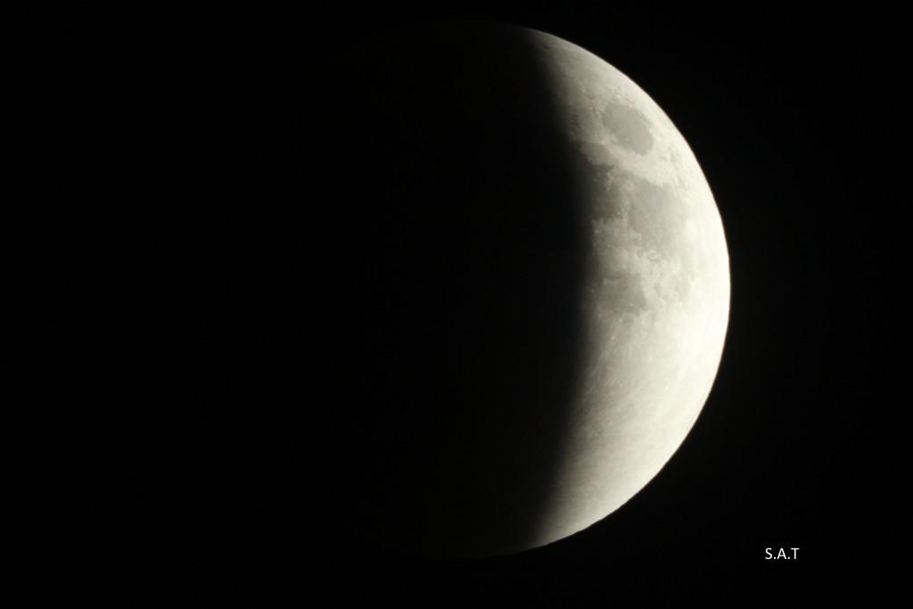 IMG_1261 éclipse partielle